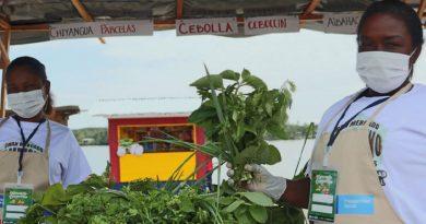 Tumaco y Barbacoas participarán del mercado campesino