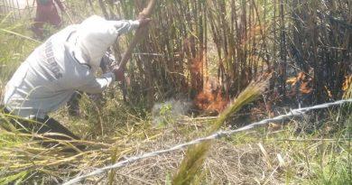 En Chachagüí controlan incendio y recuperan un cuerpo