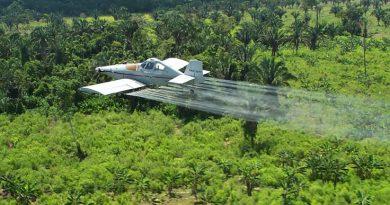 Fumigación con glifosato iniciaría en Tumaco, Putumayo, Guaviare y Bajo Cauca